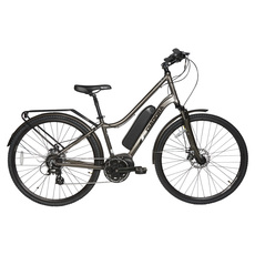 Cinetico - Adult Electricity-Assisted Bike