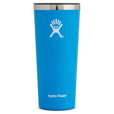 Tumbler - Insulated Glass With Lid (650 ml)