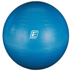 Gym 55 Pump - Stability Ball