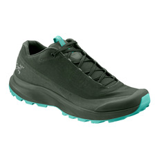 Aerios FL GTX - Women's Outdoor Shoes