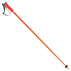 Wallrider - Men's Alpine Ski Poles