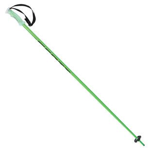 P540 - Bâtons de ski alpin pour homme