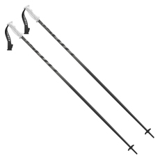 P540 - Men's Alpine Ski Poles