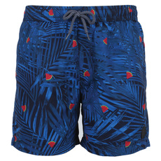 Elements - Men's Swim Shorts