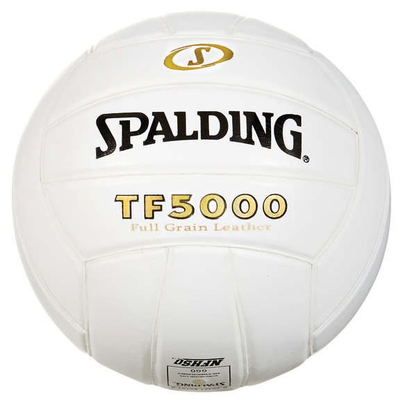 TF5000 - Ballon de volleyball
