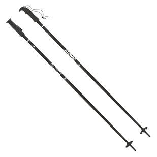 AMT - Men's Alpine Ski Poles