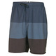 Trilogy Volley - Men's Board Shorts - 0
