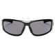 Howler Polarized  - 1