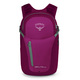 Daylite Plus 20 - Backpack - 0