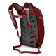 Daylite Plus 20 - Backpack - 1