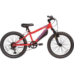"""Hornet (20"""") - Boys' Mountain Bike"""