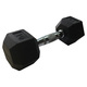 LI-PMDB02-10 - Cast Iron Dumbell (Each) - 0